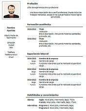 curriculum profesional formato de curriculum vitae