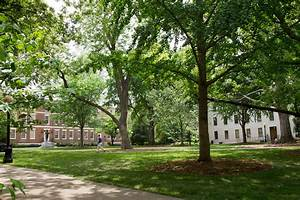 UGA earns fourth straight Tree Campus USA recognition ...