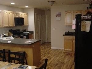 paint color advice for kitchen with maple cabinets thriftyfun