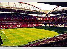 SL Benfica simondesign