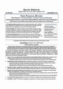 Professional cfo resume sample for Cfo resume writing services