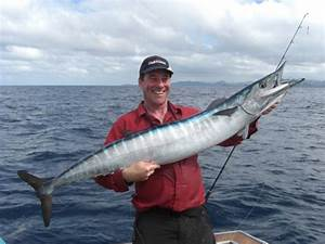Wahoo - Gamefishing Fiji - The best of Fiji Fishing