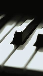 Piano Key Close Up Macro iPhone 5 Wallpaper / iPod ...