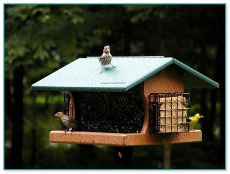 cardinal birdhouse plans   home improvement