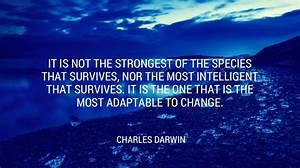 11 Digital Tran... Digital Inspirational Quotes