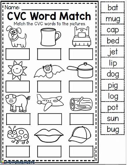 Cvc Worksheets Words Worksheet Grade Tracing Kindergarten