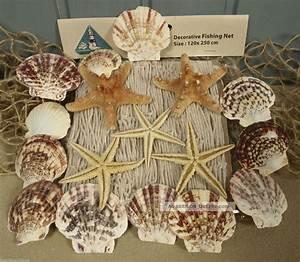 Fischernetz Mit Muscheln : dickes fischernetz 1 2x2 5m beige 5 seesterne 12 muscheln f r die maritime deko ~ Sanjose-hotels-ca.com Haus und Dekorationen