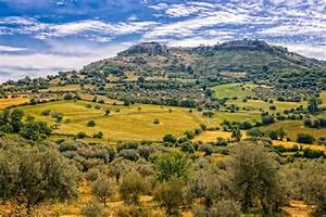 Louer Voiture Sicile : location de voiture en sicile comment viter les arnaques ~ Medecine-chirurgie-esthetiques.com Avis de Voitures