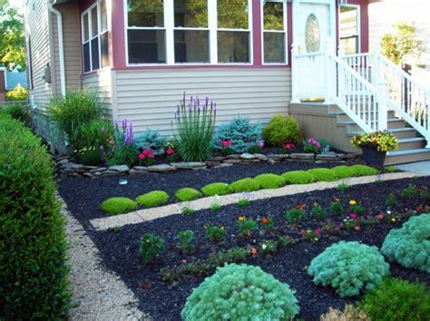pflanzen für den vorgarten vorgarten anlegen sch 246 ne ideen wie sie den vorgarten zum besseren umgestalten