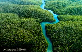Pics Photos - Amazon River Images