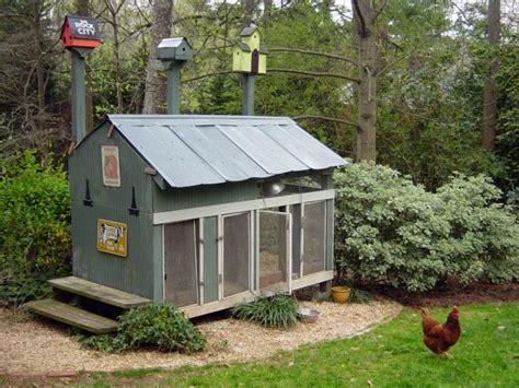 Diy Backyard Chicken Coop by Chicken Coops For Backyard Flocks Hgtv