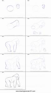 How To Draw A Gorilla Printable Step By Step Drawing Sheet