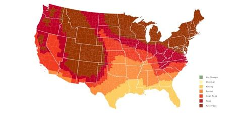 2018 Fall Foliage Map Shows When The Leaves Will Start