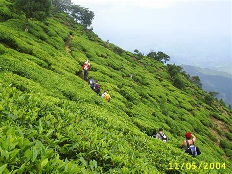 About  Sri Lanka Trekking Nature Holidays