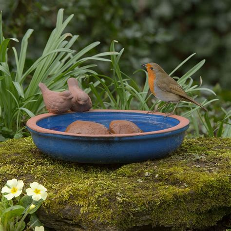 blue dipper bird bath rspb bird baths rspb shop