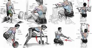 The Best Upper Back Workout For Mass