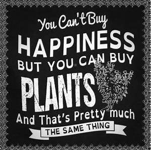 you can't b... Garden Happiness Quotes