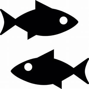 Fish Vectors, Photos and PSD files | Free Download