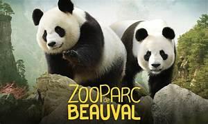 Billet Zoo De Beauval Leclerc : zooparc de beauval vacances arts guides voyages ~ Medecine-chirurgie-esthetiques.com Avis de Voitures