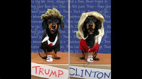 wiener dog debate  presidential debate trump