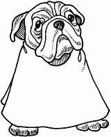 Coloring Bulldog Barber Barbershop Going Template sketch template