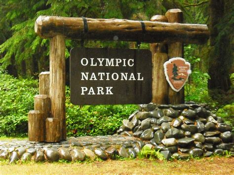 Olympic National Park, Forks, Wa  Kellymanningphotography. Dented Signs. Restaurant Signs Of Stroke. Fungal Signs. Adventitious Breath Signs. Kritikal Signs Of Stroke. Notes Signs Of Stroke. Small Case Signs. Signals Signs