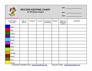 Record Keeping Charts For Breeders  Whelping By Puppiesinbloom