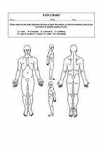 Blank Pain Chart Template Printable Pdf Download