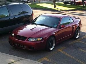 03 Mustang Cobra Clone for Sale in Norwalk, Connecticut Classified | AmericanListed.com