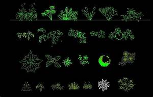 Shrubs Trees Plants Top View Plan And Elevation 2D DWG