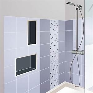 Niche De Douche : r aliser une niche de douche ~ Premium-room.com Idées de Décoration