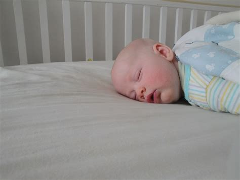 Naturepedic Organic Waterproof Crib Mattress Review