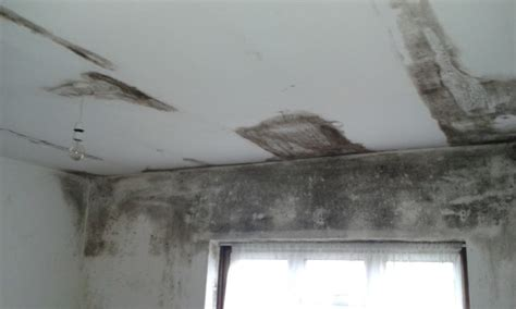 Mould On Ceiling In Bedroom Health