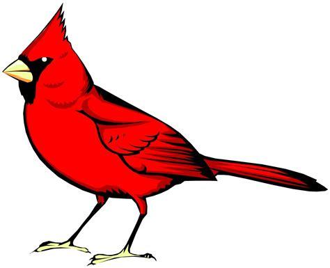 Cardinal Clipart Cardinal Cliparts Co