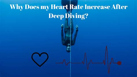 Why Does My Heart Rate Increase After Deep Freediving
