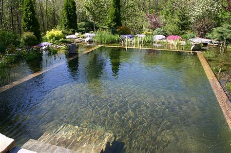 Swimming Pond : Natural Swimming Pools Design Ideas, Inspirations, Photos