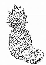Pineapple Pages Coloring Whitesbelfast Indiaparenting Credit Save Sliced sketch template