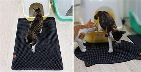 black cat litter mat blackhole litter mat really traps cat litter hauspanther
