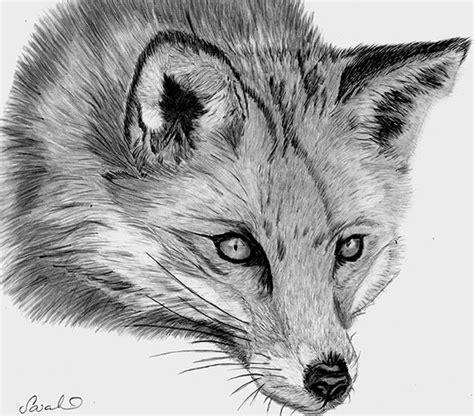 Sarahs Pet Portraits and Art Work: Red Fox Graphite Pencil ...