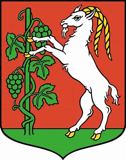 Arms Coat Clip Lublin Onlinelabels Svg