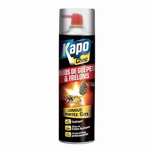 Bombe Insecticide Spéciale Pour Nids De Guêpes Et Frelons : bombe anti nid de frelon ~ Melissatoandfro.com Idées de Décoration