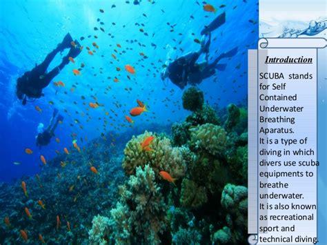 st thomas scuba diving   find  amusing