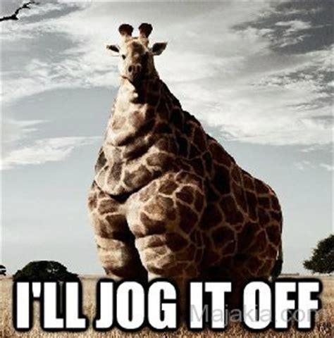 Meme Giraffe - giraffe meme www pixshark com images galleries with a bite