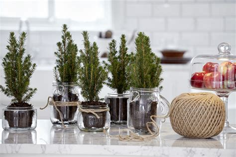 Mason Jar Christmas Craft Ideas Living Room Lamp Ideas Gold Coffee Tables Toy Box For Rugs Small Rooms Victorian Furniture Desighn Window Treatments Dining And Ikea Reviews