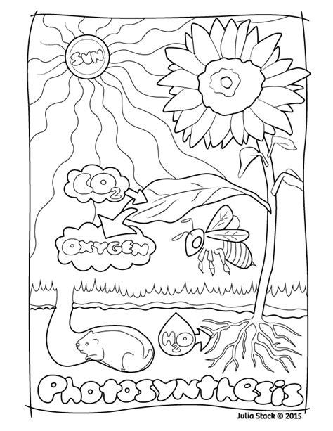 julia stack drawbones medical illustration