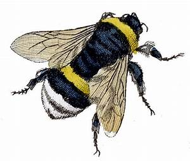 Vintage Clip Art - Fabulous Bumble Bees - The Graphics Fairy