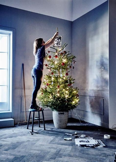 17 best images about happy holidays on pinterest trees