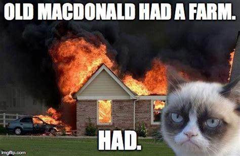 Old Macdonald Had A Farm Had Meme - burn kitty meme imgflip