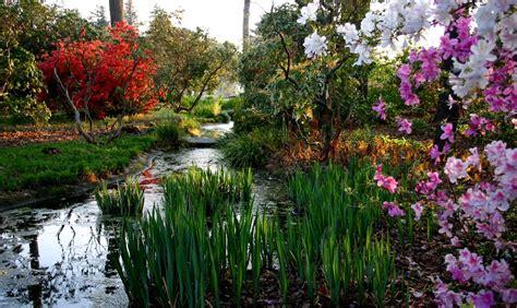 norfolk botanical garden 18 gardentastic adventures to embark on lawnstarter