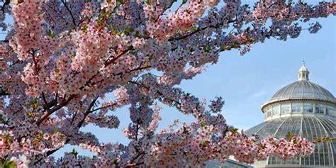 Botanischer Garten Garden Tickets by Botanischer Garten New York Sparen Sie Bis Zu 10 20